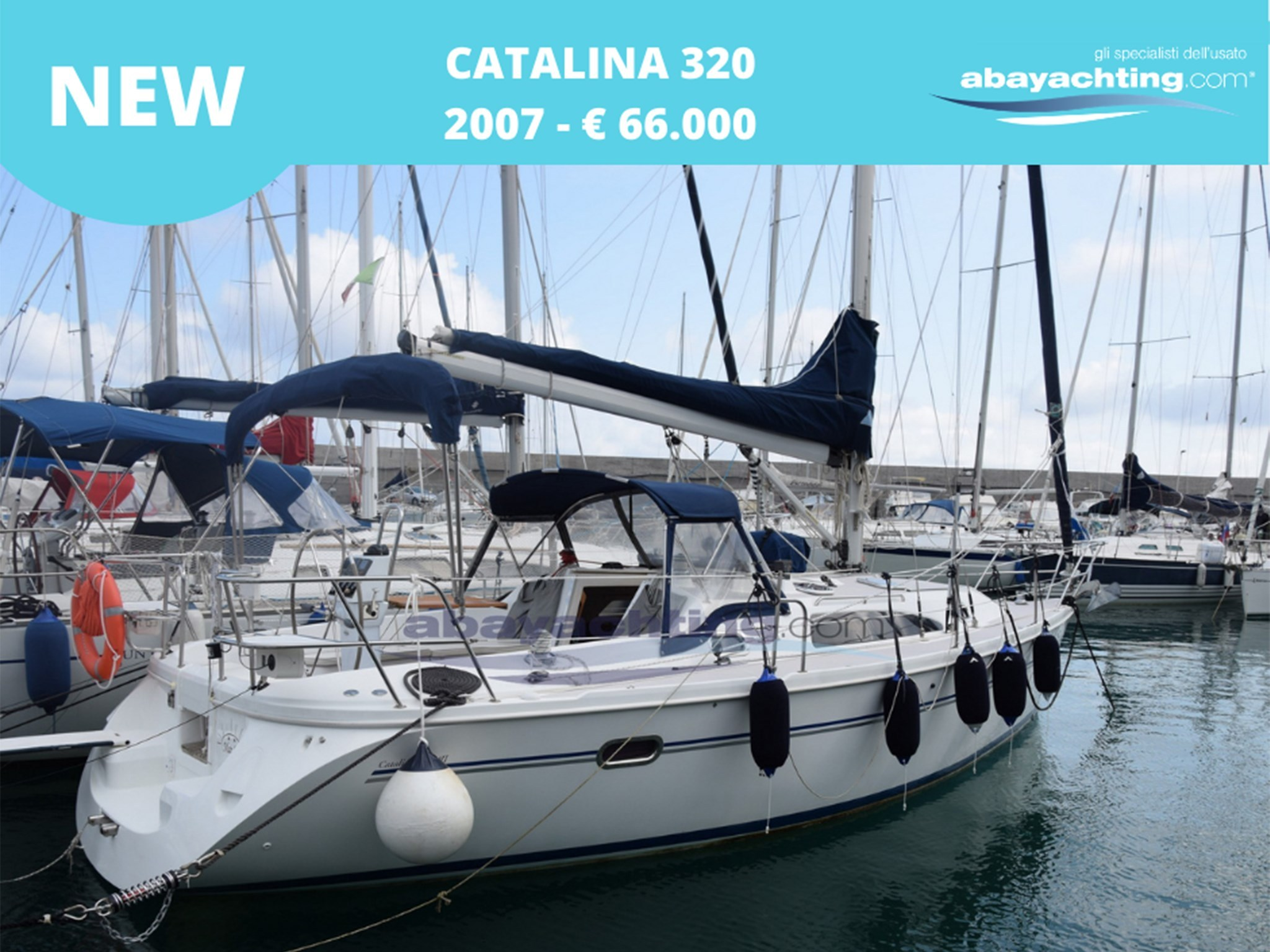New arrival Catalina 320